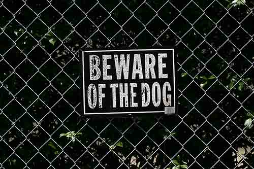 This image shows a beware of dog sign. A Garden City dog bite lawyer can provide owners of aggressive or fearful pets with helpful information.