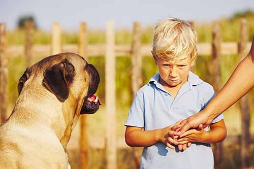 This image shows a young blonde boy looking anxiously at a friendly dog.